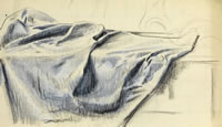 Study of a table cloth