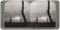 Stereoscopic print: The Golden sun...