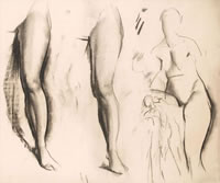 Study of female legs