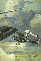 An RE8 with a French Nieuport 27...