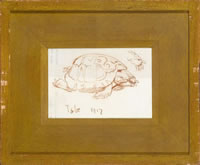 Toby the tortoise, 1917
