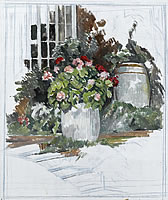 Geraniums in Barrel, 1970